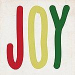 Tracey Thorn Joy
