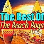 The Beach Boys The Best Of The Beach Boys (Live)