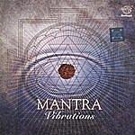 Prof.Thiagarajan & Sanskrit Scholars Mantra Vibrations