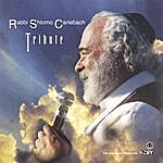 Rabbi Shlomo Carlebach Tribute