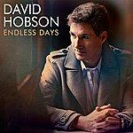 David Hobson Endless Days