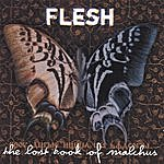 The Flesh The Lost Book Of Malchus
