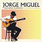 Jorge Miguel Guitarra Flamenca / Flamenco Guitar