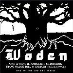 Julian Cope Woden