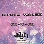 Steve Walsh One-To-One