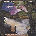 Amy Sierra's Enchanted Forest And Other Meditations For The Inner Child