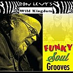 Ron Levy Funky Soul Grooves