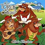 Los Toros Band Solo Bachata