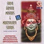 Prof.Thiagarajan & Sanskrit Scholars Sarva Gayatri Mantras & Mrutyunjaya Stotras