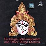 Prof.Thiagarajan & Sanskrit Scholars Sri Durga Sahasranamam And Other Durga Stotras