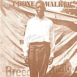 T-Bone Walker The Inventor Of The Electric Guitar Blues