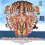 Prof.Thiagarajan & Sanskrit Scholars Sakala Devata Bija Mantras