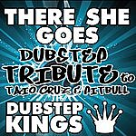 D There She Goes (Dubstep Tribute To Taio Cruz & Pitbull)