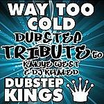 D Way Too Cold (Dubstep Tribute To Kanye West & Dj Khaled)