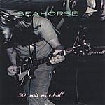 Sea Horse 50 Watt Marshall