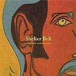 Shelter Belt Under The World Awhile