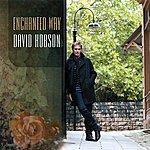 David Hobson Enchanted Way
