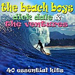 The Beach Boys 40 Essential Hits - The Very Best Of