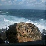 Terry Lewis Sea