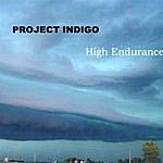 Project Indigo High Endurance