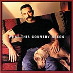 Aaron Tippin What This Country Needs