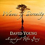 David Young Waves Of Serenity
