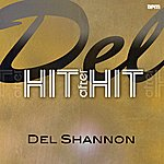 Del Shannon Del - Hit After Hit