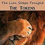 The Tokens The Lion Sleeps Tonight