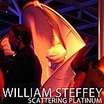 William Steffey Scattering Platinum