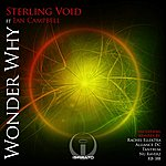 Sterling Void Wonder Why (Feat. Ian Campbell)