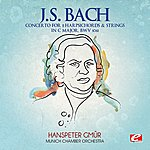Munich Chamber Orchestra J.S. Bach: Concerto For 2 Harpsichords & Strings In C Major, Bwv 1061 (Digitally Remastered)