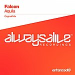 Falcon Aquila
