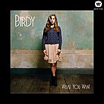 Birdy What You Want (2-Track Single)
