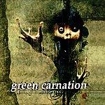 Green Carnation The Quiet Offspring