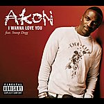 Akon I Wanna Love You (Live From Canal Room)