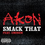 Akon Smack That (Feat. Eminem) (2-Track Single) (Parental Advisory)