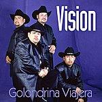 Vision Golondrina Viajera