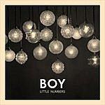 Boy Little Numbers