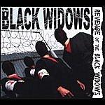Black Widows Revenge Of The Black Widows