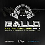 Gallo The Instruduction Vol 1