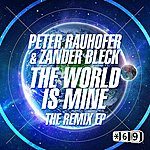 Peter Rauhofer The World Is Mine The Remix Ep
