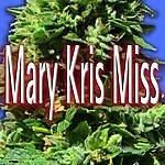 Joe Romersa Mary Kris Miss