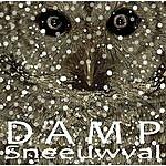 Damp Sneeuwval