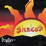 The Shakes Shakes