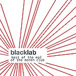 Black Lab Best Of The Mp3 Of The Month Club