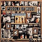 Puddle Of Mudd Life On Display (International Version)