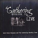 Peter Neumann The Gathering Live