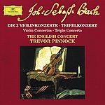 The English Concert Bach: The 3 Violin Concertos; Triple Concerto (Cd 12)