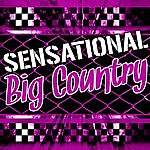 Big Country Sensational Big Country (Live)