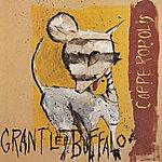Grant Lee Buffalo Copperopolis